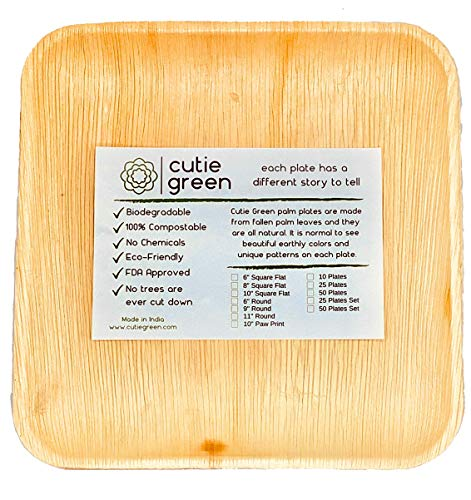 Cutie Green Palm Leaf Plates Set (Pack of 25) - 100% Eco-Friendly, Biodegradable and Compostable Disposable Plates - Heavy-Duty All Natural Dinnerware for Camping, BBQ, Outdoors (8