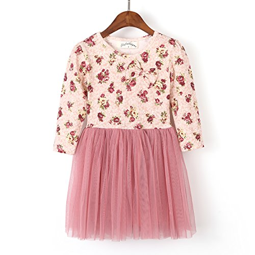 Flofallzique Long Sleeve Girl Dress Toddler Vintage Floral Tulle Birthday Baby Girls Clothes