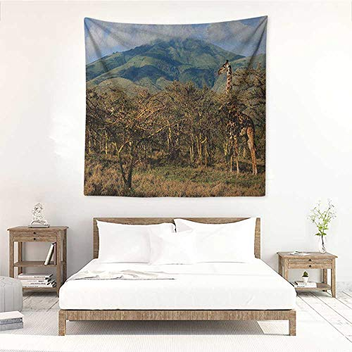 Willsd Zoo Fashion Square Tapestry Giraffe Among Trees Prickly Acacias Grazing Mountain Africa Safari Savanna Tapestry for Home Decor 39W x 39L INCH Green Blue Pale Brown (Best Acacia For Dmt)