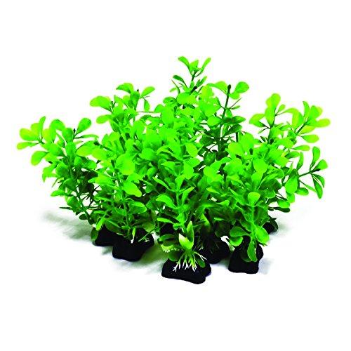 Aquatop Aquatic Supplies-Profit Power Pack Bushy Plant- Green 5 Inch 10 Pack