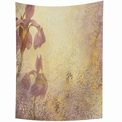 (Ahawoso Tapestry 60x80 Inch Messy Purple Royal Iris Abstract Stationary Grungy Watercolor Aged Announcement Antique Bloom Blotchy Ivory Wall Hanging Home Decor for Living Room Bedroom Dorm)