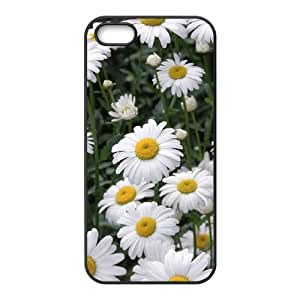 "YCHZH Phone case Of Chrysanthemum Cover Case For iPhone 6 Plus (5.5"")"