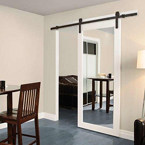 Mirrored Door - 1