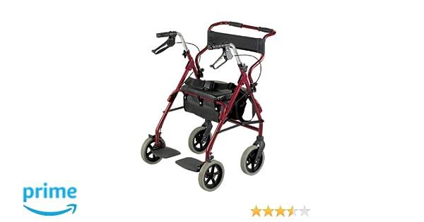 Patterson Medical - Andador y silla de transporte 2 en 1 ...