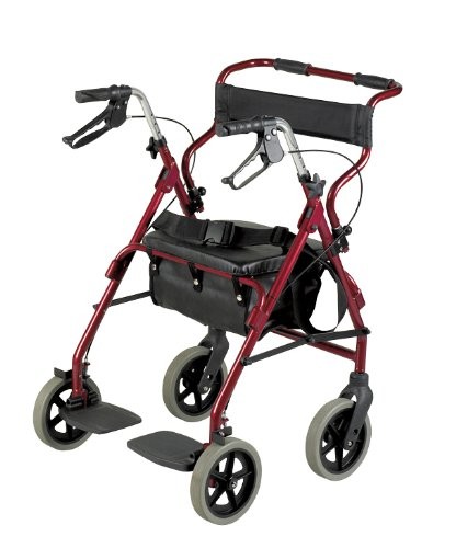 Patterson Medical - Andador y silla de transporte 2 en 1 ...
