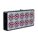 Reflector-Series 450W LED Grow Light Veg/Flower Full Spectrum for Indoor Plants ,Substitute HPS/MH 1000 Watt Review