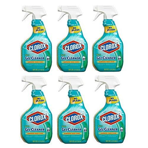 Clorox, Bleach Gel Cleaner - 30 oz (Pack of 6)