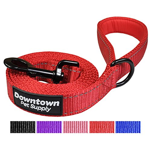 Downtown Pet Supply Reflective Dog Leash with Padded Handle and Strong Nylon (Color: Red)