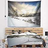 Designart TAP9493-80-68 'Snow Storm in Spain' Landscape Photography Tapestry Blanket Décor Wall Art for Home and Office, x Large: 80 in. x 68 in, Created on Lightweight Polyester Fabric