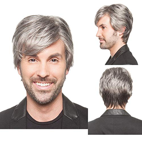 BERON Men's Short Straight Wig Silver Grey Cosplay Costume Wig Full Synthetic Wigs Wig Cap Included -