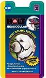 Coastal Holt Dog Walking Collar, Black, 3, My Pet Supplies