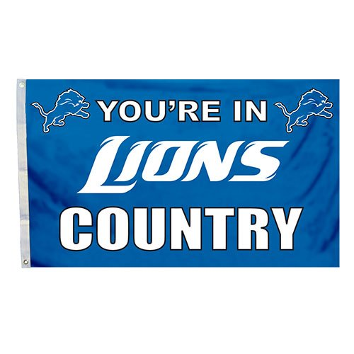 NFL Detroit Lions in Country Flag with Grommets, 3 x 5-Foot ()