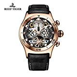 Reef Tiger Luminous Sport Watch with Year Month Date Day Steel Skeleton Dial Unique Watch RGA703