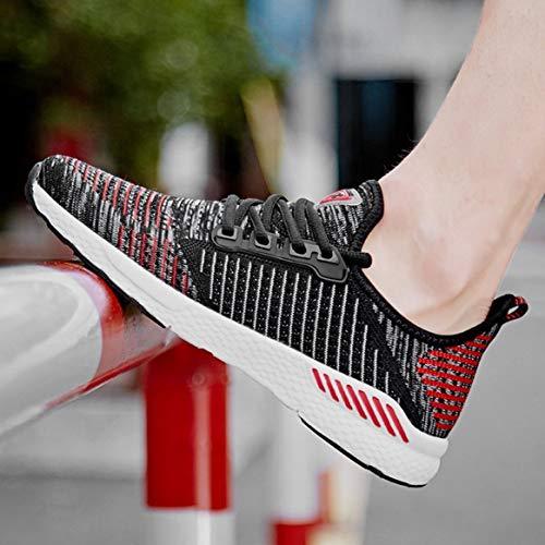 da comode Stagione Scarpe Sneakers Jogging Casual Moda per Mesh la Quotidiana Stringate da Sportive Piatte Corsa Scarpe in Traspirante Tutta Usura WSFFw1qU