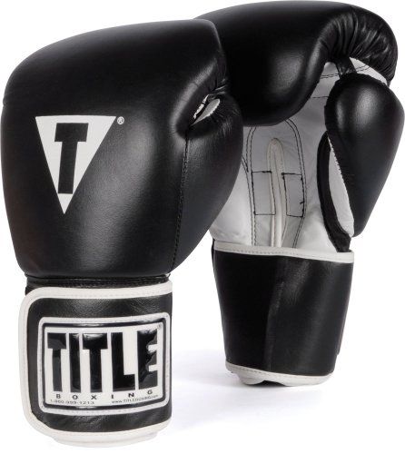 Top 10 boxing gloves leather training for 2020