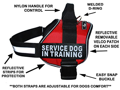 Servcie Dog in Training Nylon Dog Vest Harness. Purchase Comes with 2 Reflective Service Dog in Training pathces. Please Measure Your Dog Before Ordering (Girth 30-42'', Red) by Doggie Stylz