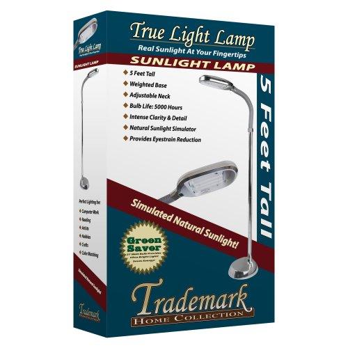 Lavish home sunlight floor lamp chrome 60quot garden for Lavish home sunlight floor lamp silver