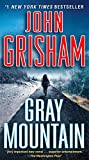 img - for Gray Mountain: A Novel book / textbook / text book
