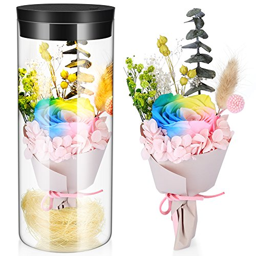 Preserved Real Rose Eternal Flower with LED Night Lights Gift for Women Girls on Birthday, Valentine's Day, Mother's Day, Christmas (Multi-Color Rose with LED Light)