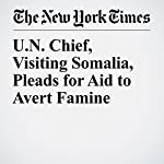 U.N. Chief, Visiting Somalia, Pleads for Aid to Avert Famine | Hussein Mohamed,Sewell Chan