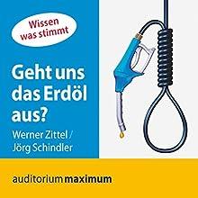 Geht uns das Erdöl aus? (Wissen was stimmt) Hörbuch von Jörg Schnidler, Werner Zittel Gesprochen von: Manfred Fenner