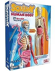 Squishy Human Body (SmartLAB)
