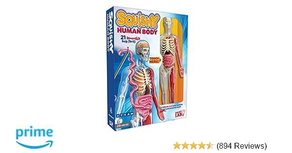 Haven Body Arts Price