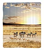 Chaoran 1 Fleece Blanket on Amazon Super Silky Soft All Season Super Plush Safari Decor Collection Zebras with Theirtriped Coats inavannahsunset Adventure Africa Wildafari Photo Fabric Cream Golden