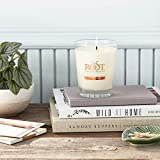 Root Candles Honeycomb Veriglass Scented Beeswax