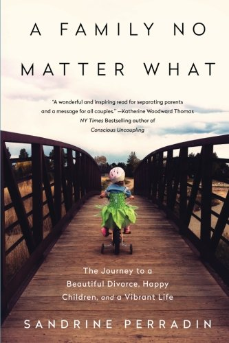 A Family No Matter What: The Journey to a Beautiful Divorce, Happy Children, and a Vibrant Life