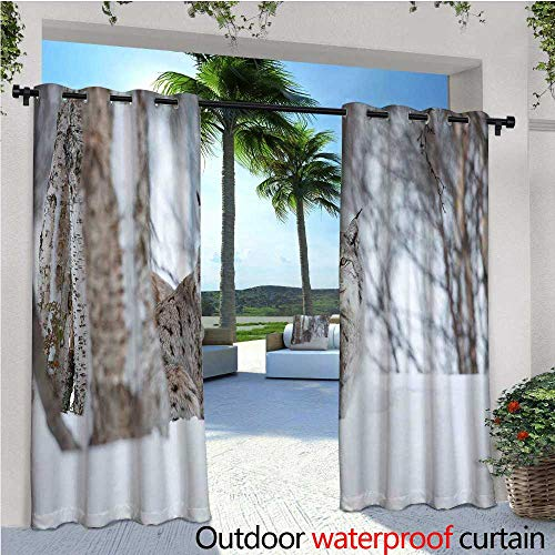 cobeDecor Animal Outdoor Blackout Curtains European Lynx Snowy Cold Forest Norway Nordic Country Wildlife Apex Predator Outdoor Privacy Porch Curtains W120 x L84 Pale Brown White ()