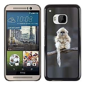 Shell-Star Arte & diseño plástico duro Fundas Cover Cubre Hard Case Cover para HTC One M9 ( Japanese Snow Monkey Ape Cute )