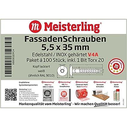 Meisterling/® Lot de 100 vis de fa/çade en acier inoxydable V4a Inox blanc 1 embout avec t/ête plate color/ée thermolaqu/ée et empreinte Torx T 20 blanc