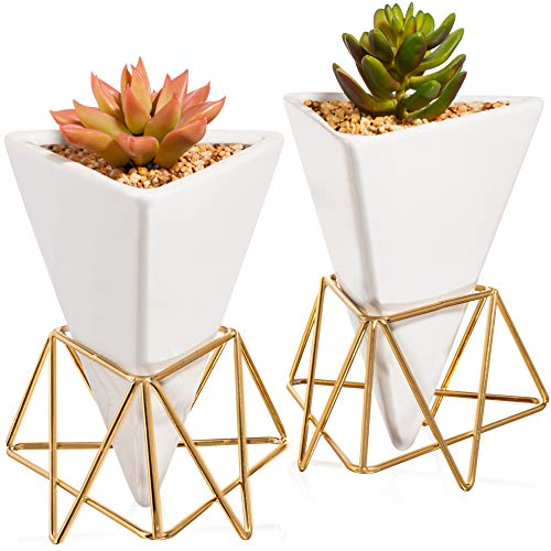 Succulent Wall Planter Geometric Pack of 2 – Modern Mounted Gold Metal Stylish Stand and White Ceramic Vase Suitable for…