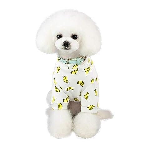 zarupeng✦‿✦ Mascota Primavera y Verano impresión Perro Gato Trajes Mascota Ropa Vestido Caricatura Ropa: Amazon.es: Ropa y accesorios