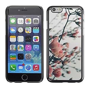 FECELL CITY // Duro Aluminio Pegatina PC Caso decorativo Funda Carcasa de Protección para Apple Iphone 6 Plus 5.5 // Cherry Apple Plum Tree Blossom Spring Pink