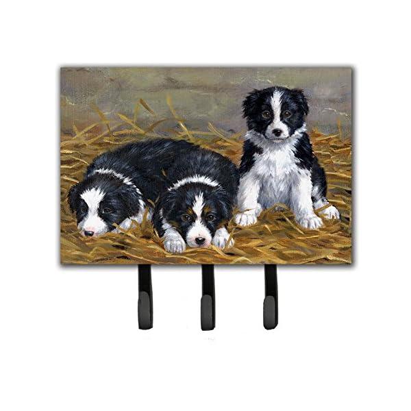 Caroline's Treasures ASA2196TH68 Border Collie Puppies Leash or Key Holder, Triple, Multicolor 1