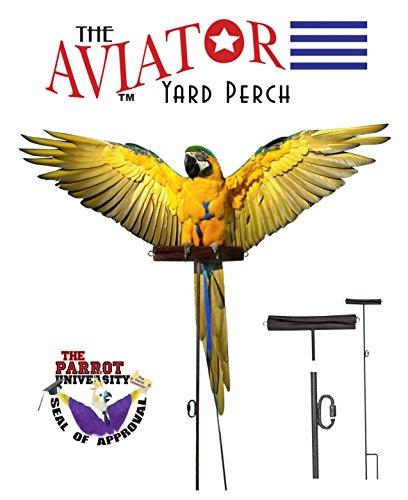 The AVIATOR Yard Perch by The AVIATOR