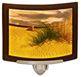 Balmy Beach- Colored Curved Porcelain Lithophane Night Light