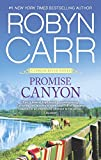Promise Canyon (A Virgin River Novel Book 13)