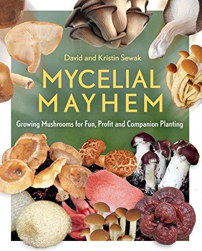 Mycelial Mayhem: Growing Mushrooms for Fun Profit and Companion Planting