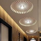 Modern Corridor Porch Lights,Creative Ceiling Lights,Flush Mounted Sunflower Wall Lights,Asile Lights-3W-Warm White