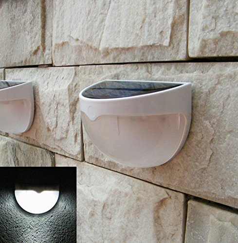Where To Place Landscape Lighting - 7