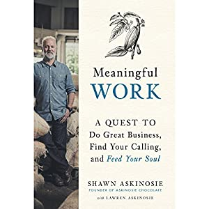 Meaningful Work Audiobook