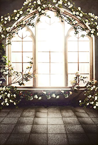 5X6.5ft French Windows Indoor Wedding Children Baby Photo Studio Decor Backgrounds Computer Painted Photography Backdrop