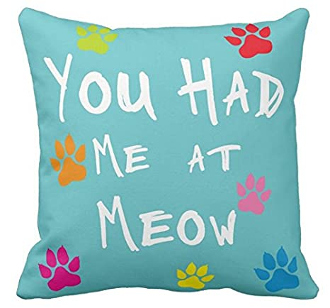 Amazon.com: Decorbox You Had Me At Meow Colorlul patrón 18 x ...