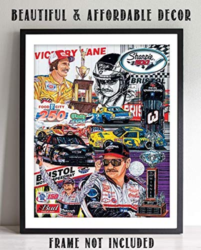 Dale Earnhardt Sr. Dedication Collage