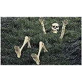 Lawn Skeleton | Halloween Decoration