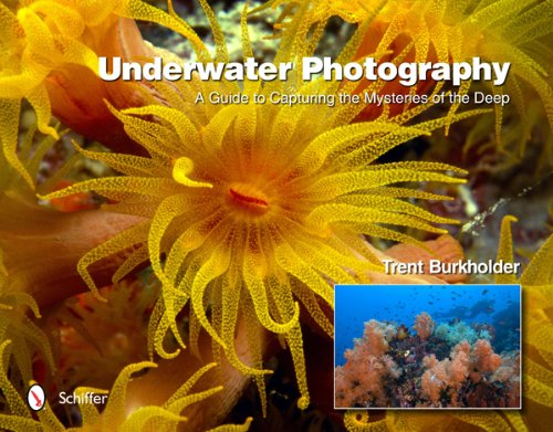 Underwater Photography: A Guide to Capturing the Mysteries of the Deep