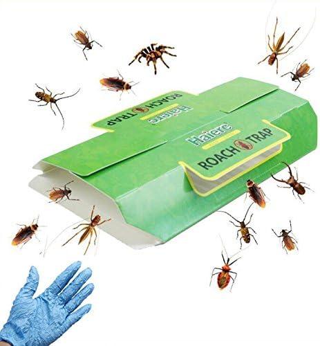 Ungfu Mall Trampas de insectos pegajosos Trampas de cucarachas Asesino de cucarachas pegajosas para el control de plagas en el hogar Mata a las cucarachas Hormigas Arañas y otros insectos Insectos con